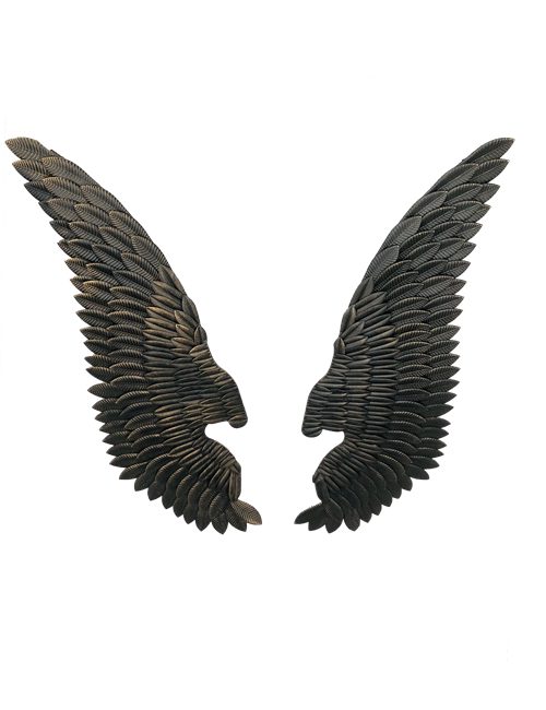 132CML BLACK/GOLD WINGS - PAIR