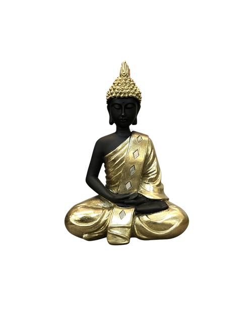 BLACK BUDDHA IN GOLD CLOTHES